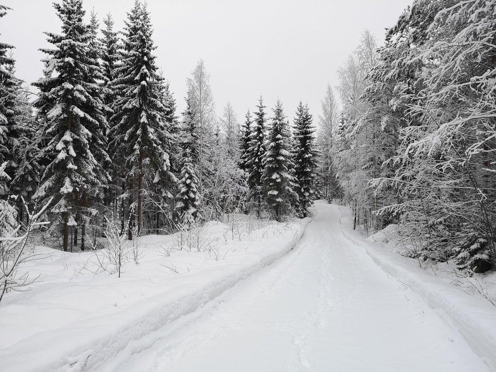Foto's van cottage Metsäranta Savonranta 36
