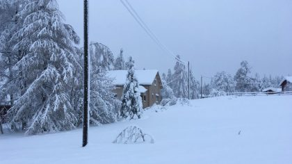 finland-snow