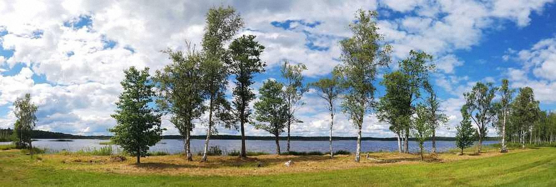 Järvenrantamökki Metsäranta – Savonranta