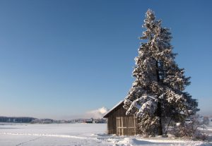 sneeuwlandschap finland