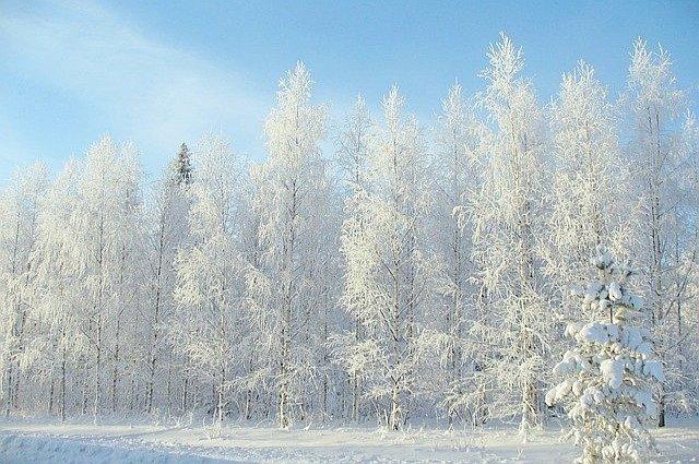 Seizoenen in Finland 1